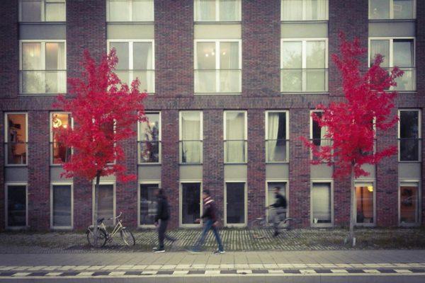facades-10